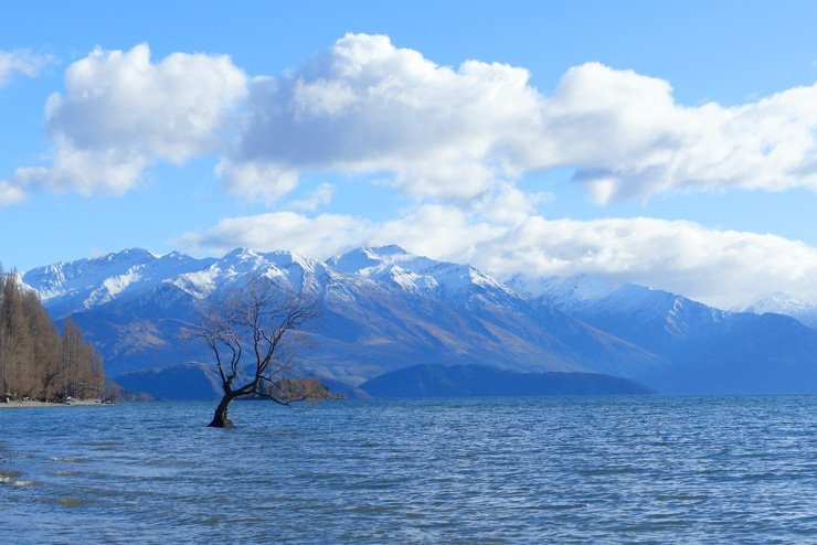 Willst du als Backpacker Neuseeland bereisen? Hier sind Spartipps