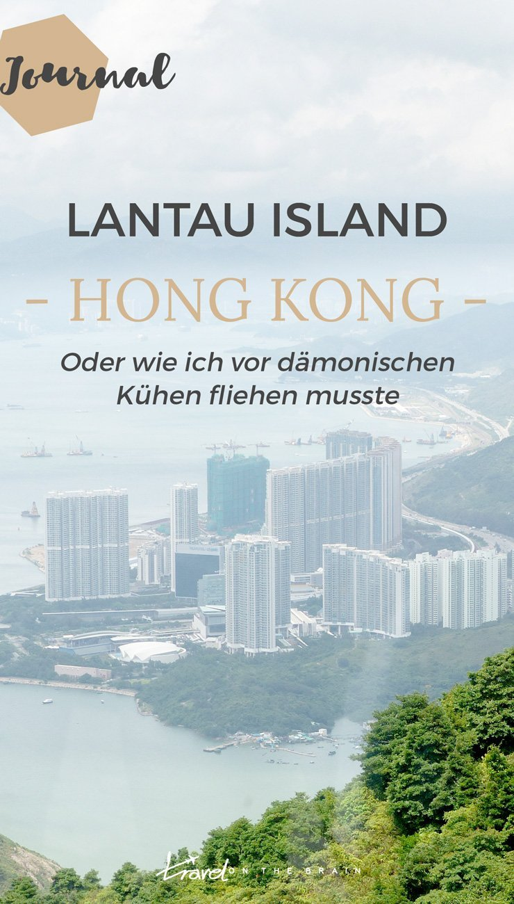 Lantau Island Hong Kong - Oder wie ich vor dämonischen Kühen fliehen musste
