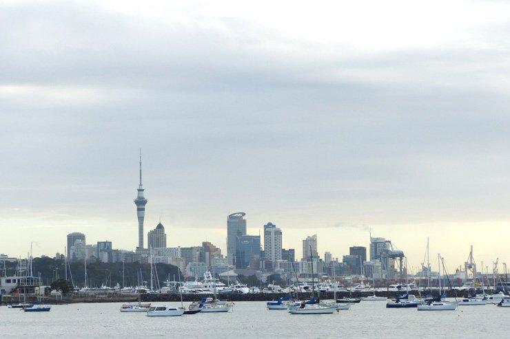 Aucklands Sehenswürdigkeiten und warum ich einen Schock bekam