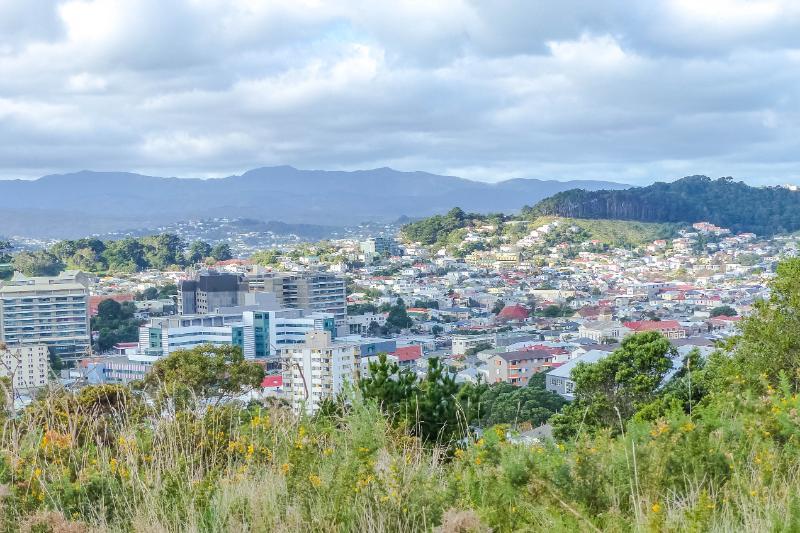 Blick auf Wellington unter bewölktem Himmel