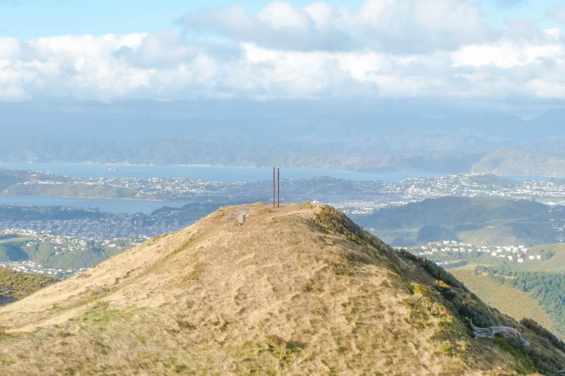 Ausblick über Wellington von Hawkins Hill bei Sonnenschein