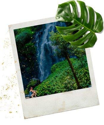 Polaroid vom Sekumpul Wasserfall Bali