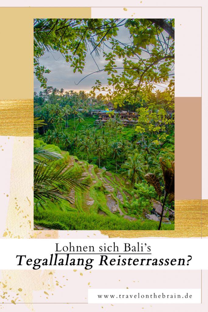 Lohnen sich die Tegallalang Reisterrassen in Bali eigentlich?