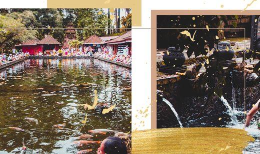 Bilder vom Wassertempel Pura Tirta Empul bei Ubud, Bali