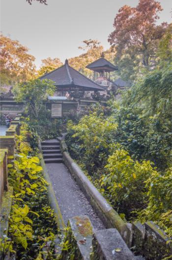 Weg zu Tempel in Ubud Bali im goldenen Morgenlicht