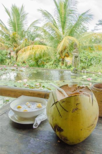 Restaurantmahlzeit mit Kokosnuss und geliertem Reisdessert mit Blick auf Lotusteich bei Ubud
