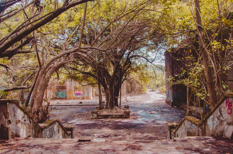 Blick auf den Vorhof vom Kino beim Taman Festival Vergnügungspark. Bäume wachsen kreuz und quer, der Boden ist uneben