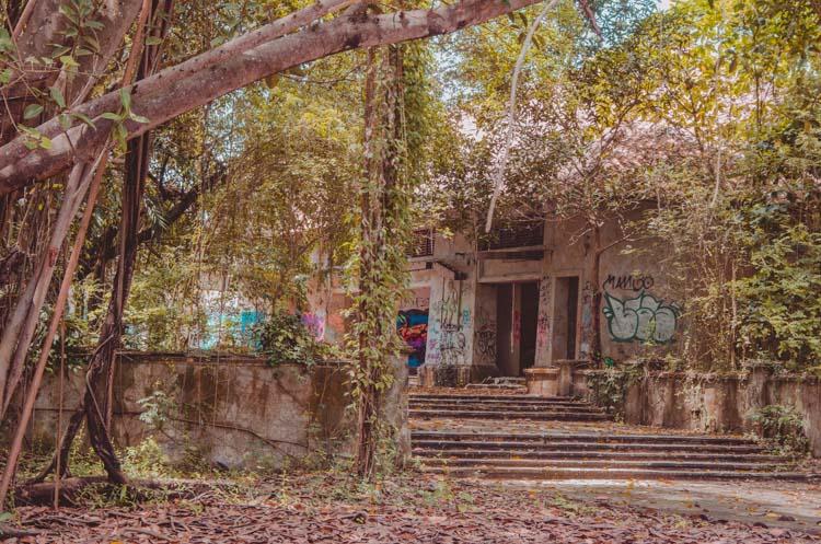 Kaputte Treppenstufen mit Lianen bei Taman Festival