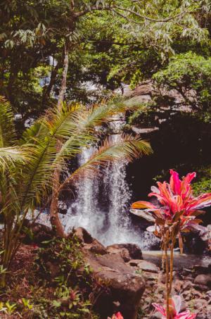 tropisches Grün umrahmt den rauschenden Sing Sing Angin in Südbali