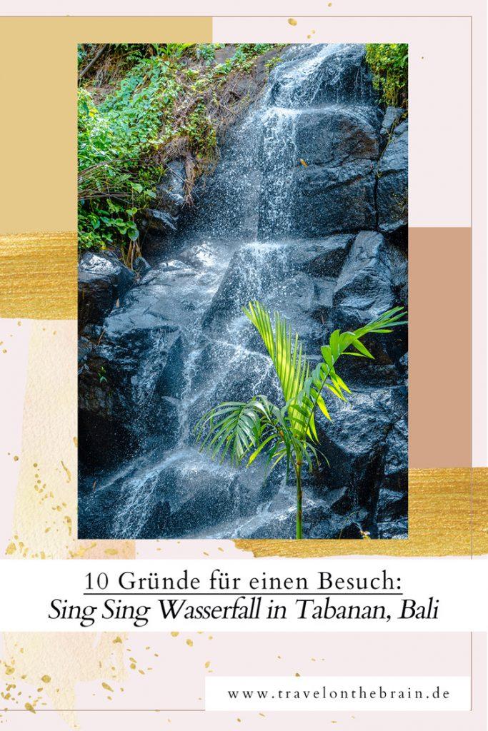 10 Gute Gründe, den Sing Sing Wasserfall in Tabanan Bali zu besuchen