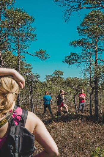 Sumpfwandern mit Mädelsgruppe bei Riga, Lettland