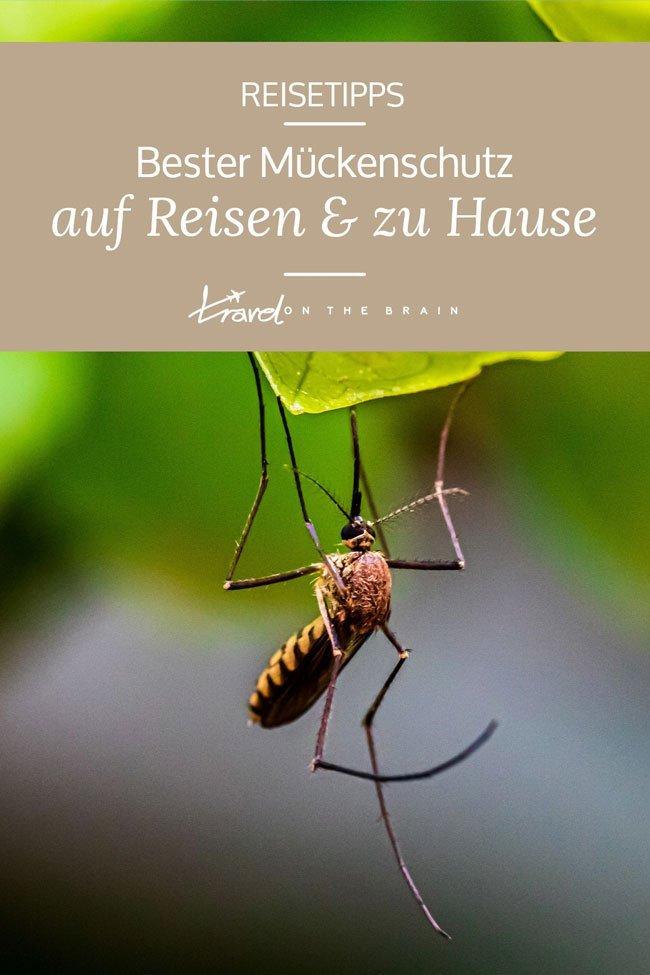 Bester Mückenschutz auf Reisen und Zuhause + Wirksame Moskitoschutz Produkte