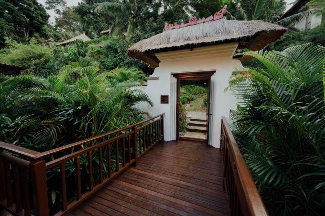 balinesisches Eingangstor mit tropischen Palmen