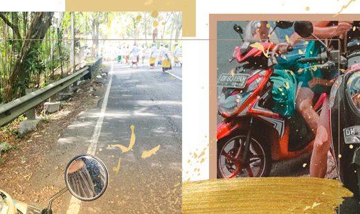 Bilder zum Rollerfahren auf Bali