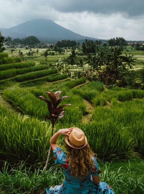 grüne Reisfelder in Bali