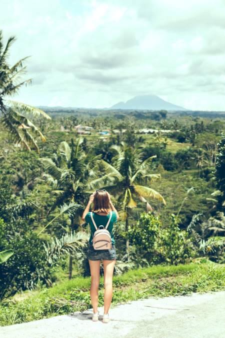 Reisfelder und Vulkan auf Bali