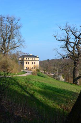 Schloss Ettersburg im Park