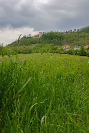 Lobdeberg mit Lobdeburg
