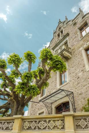 Seitenfassade am Blumenbeet vor Schloss Altenstein