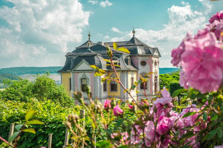Rokoko-Schloss in Dornburg umringt von Rosen