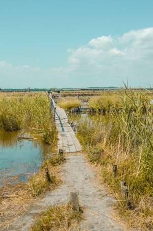 Steg zum pinken See in Bulgarien