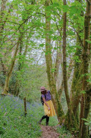 umringt von blauen Bluebells in England
