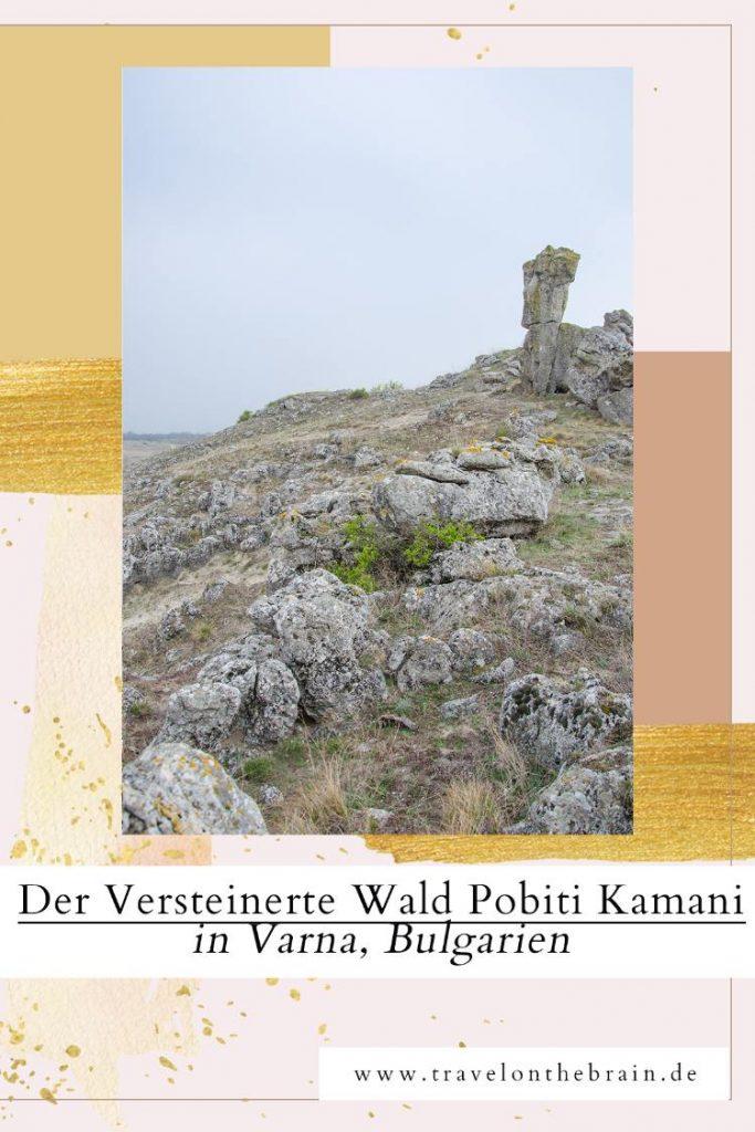 Versteinerter Wald Pobiti Kamani in Bulgarien: So geht's hin