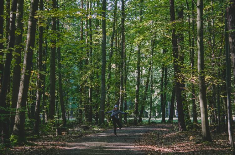 tanzend im Wald vom Saale-Holzland-Kreis