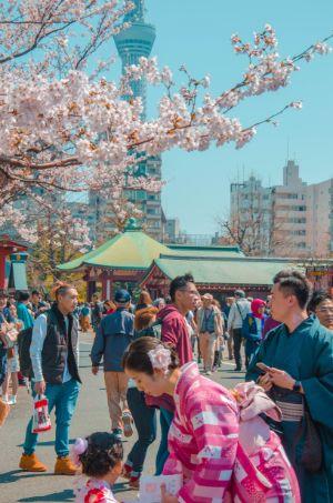 Tempelfest in Asakusa, Tokio