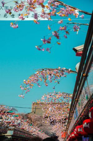 Nakamise-Dori am Sensoji in Asakusa