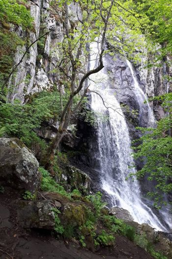 Wasserfall Boyana in Sofia in Bulgarien