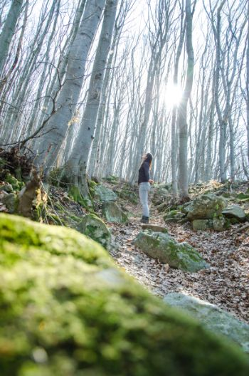 Boyana Berg Wanderung im Frühling