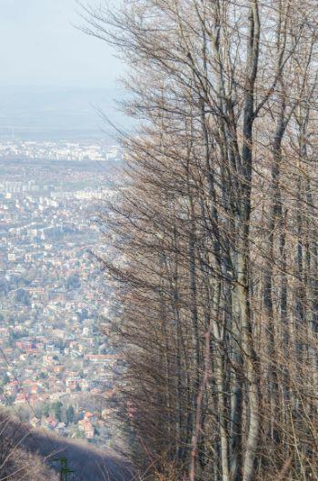 Blick auf Sofia vom Berg Boyana