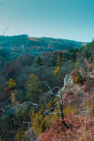 Blick ins Mühltal von den Jenaer Sonnenbergen