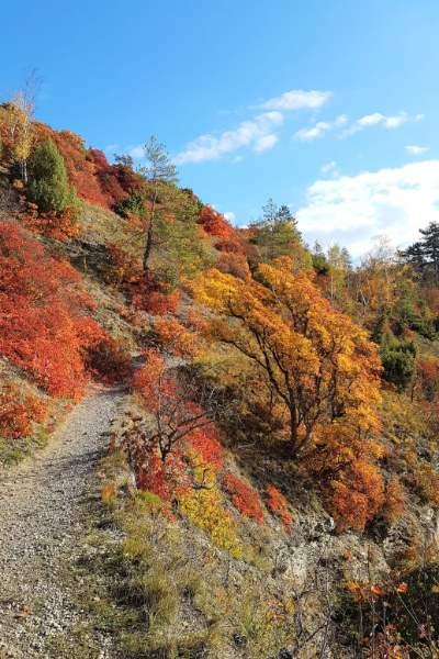 Sonnenberge in Jena im Herbst