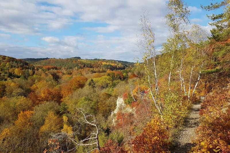 Sonnenberg Horizontale in Jena im Herbst