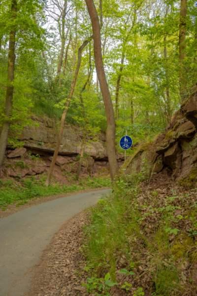 Wanderpfad um Jena mit grünen Bäumen und roten Felsen