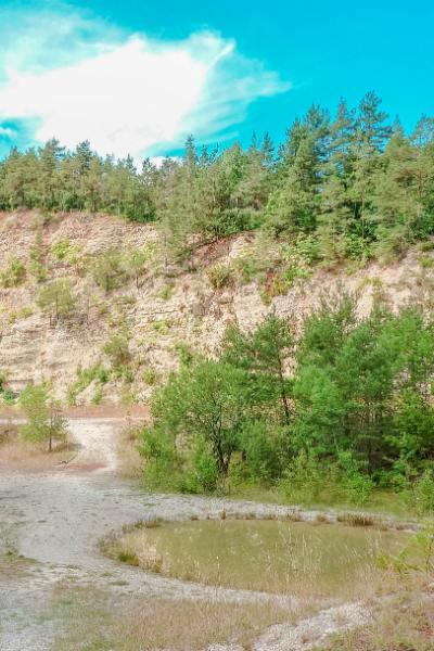 Pfütze und Bäume vor dem Steinbruch