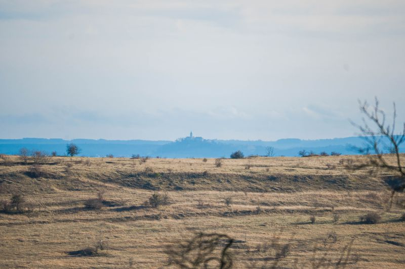 Feld bei Jena-Auerstedt mit Blick auf die Leuchtenburg