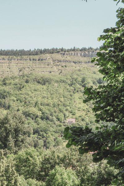 Blick auf die Mittlere Horizontale in Jena mit grünen Bäumen