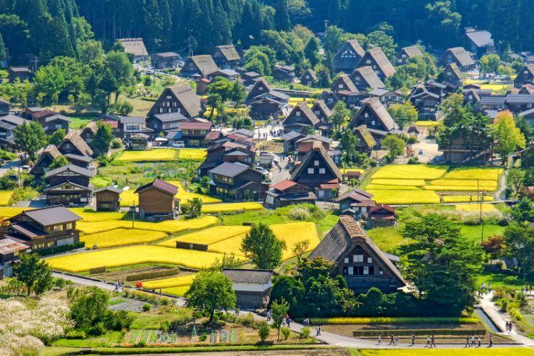 Fernblick auf Shirakawa-go im Sommer