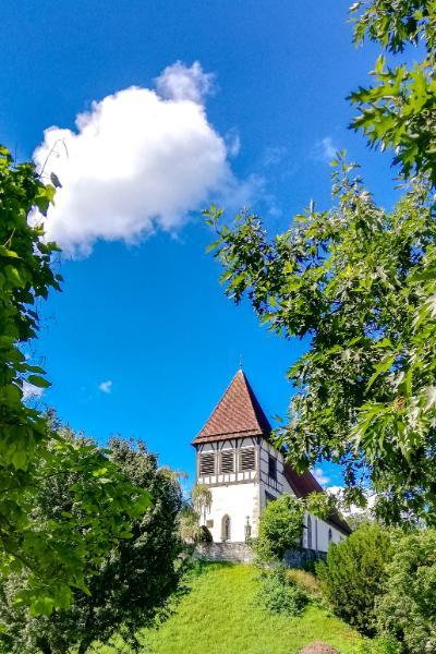 Walterichskirche im Stadtgarten von Weitem gesehen