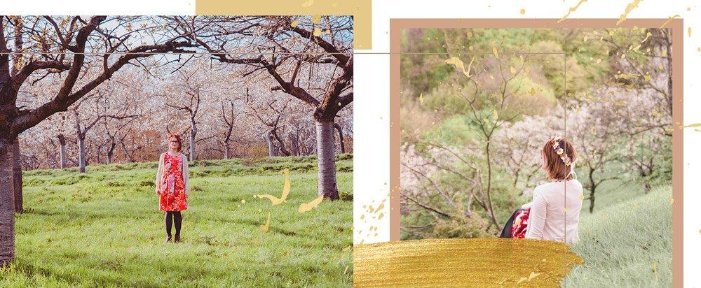 Header: Wo du die Kirschblüte in Jena findest