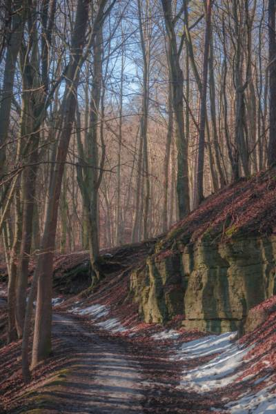 Schnee entlang an den Felsen und Buchenlaub im Rautal