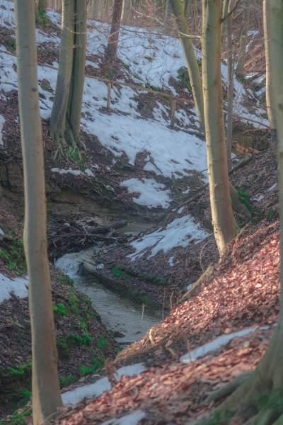 gewundener Steinbach in den Felsen des Rautals