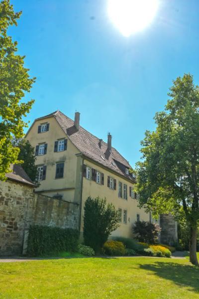 grüne Bäume am Pfarrhaus am Kloster Murrhardt