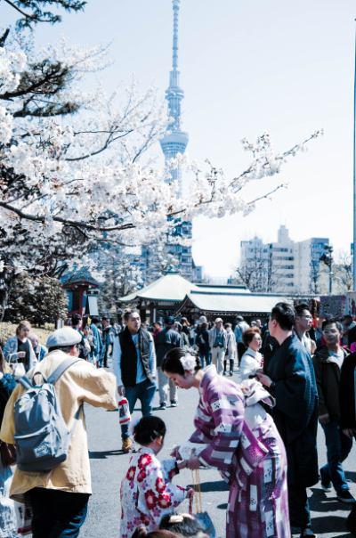 Skytree und Tempelfest umrahmt von Kirschblüten