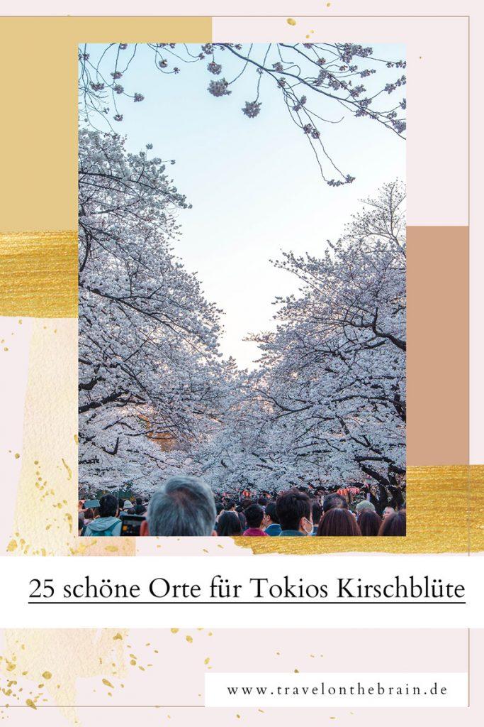 Pin: Die 10 schönsten Orte der Kirschblüte in Tokio Japan