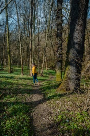 Frau inmitten von Märzenbecher auf Waldboden