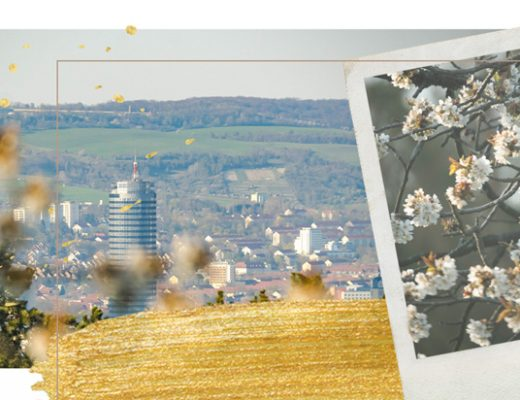 Header: Kirschblüte in Jena Winzerla